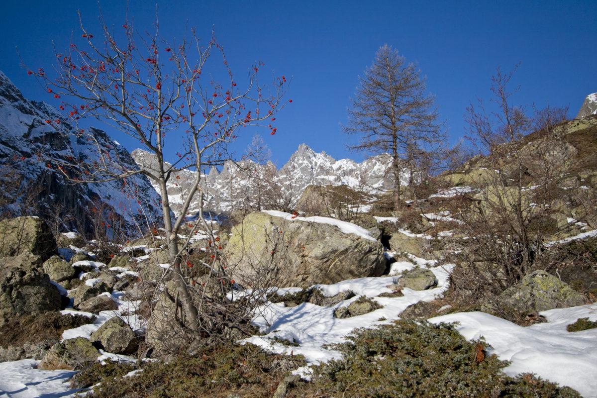 Pays des Ecrins, Hautes-Alpes.