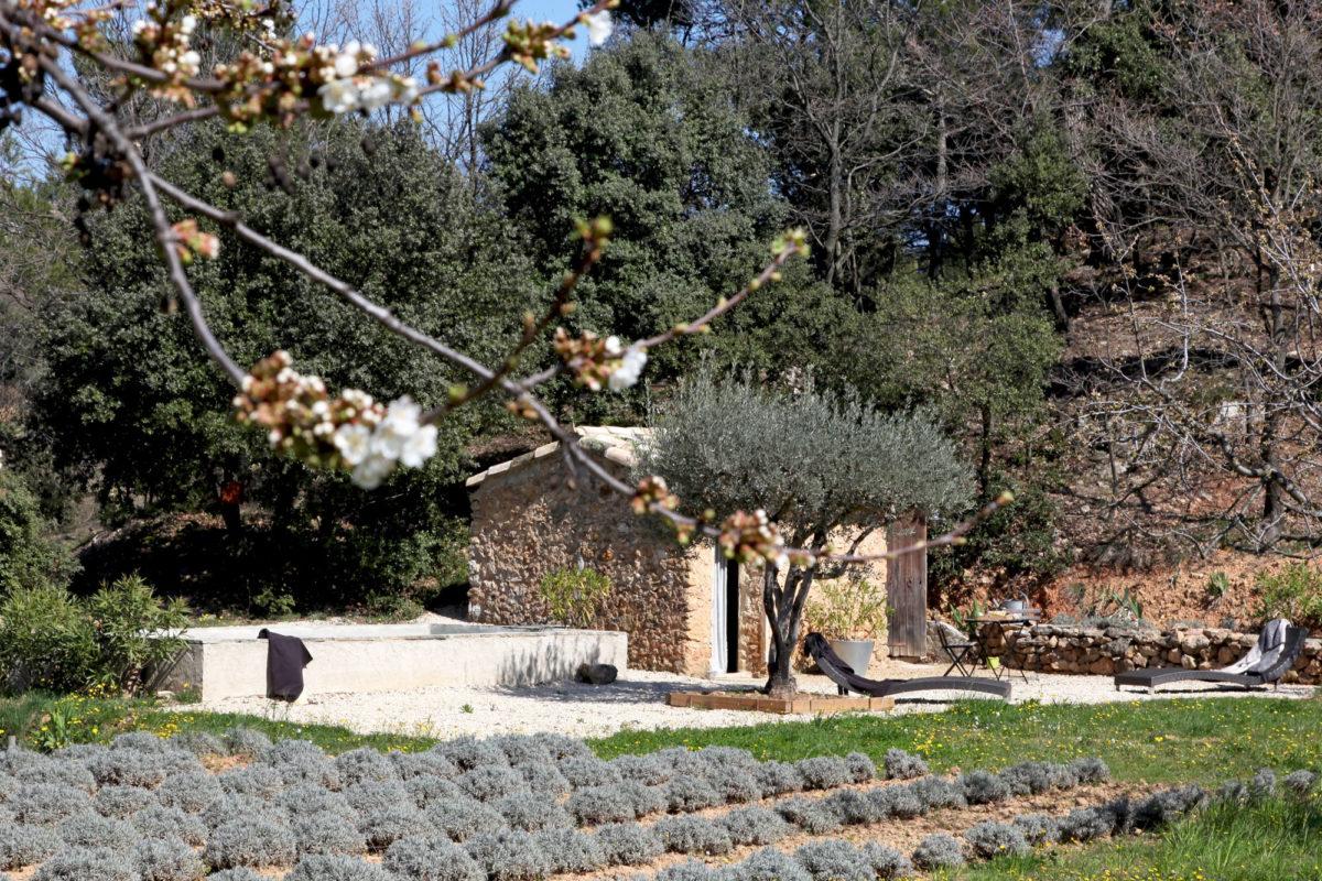 Le bassin du cabanon de Cabane Secret's en Provence.