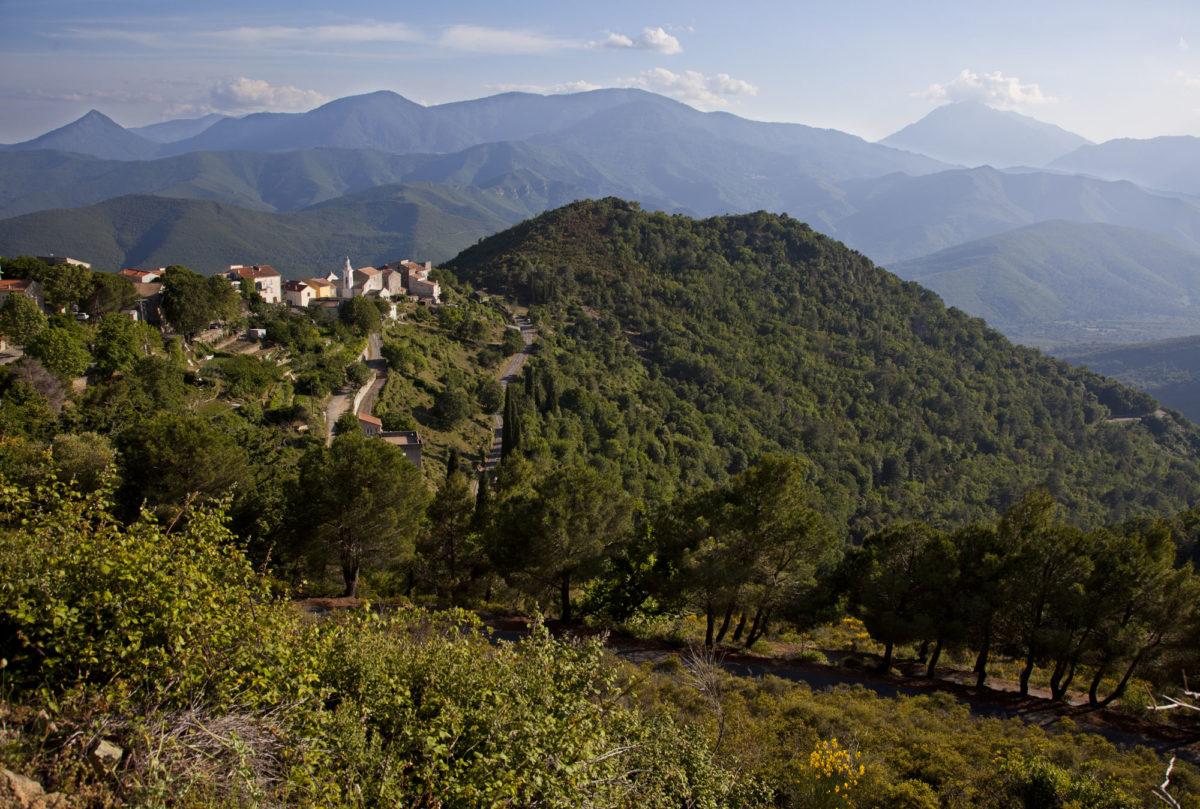 Région sauvage : Le Bozio, en Corse. © Elodie Rothan