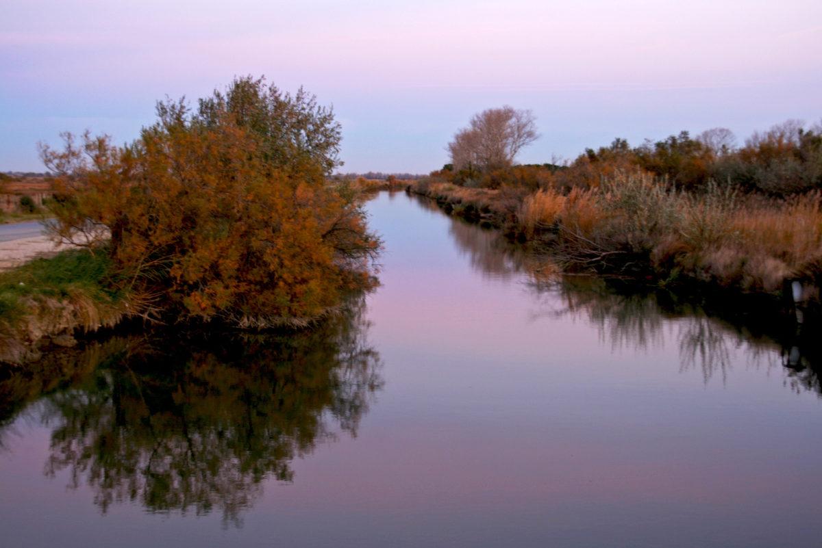 Région sauvage : Couleurs du soir, Camargue, Provence. © Elodie Rothan