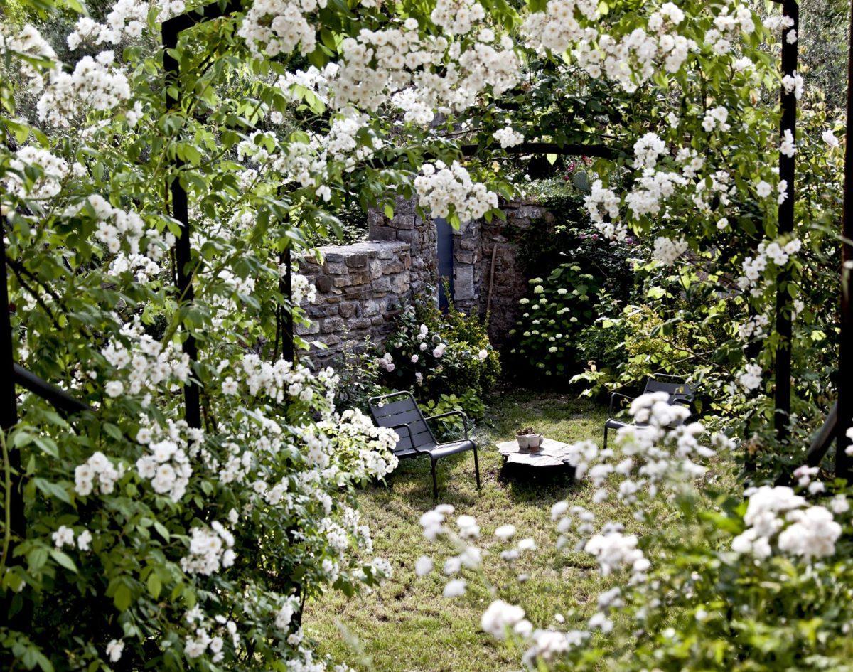 Bosquet de roses, maison en Ardèche. © Elodie