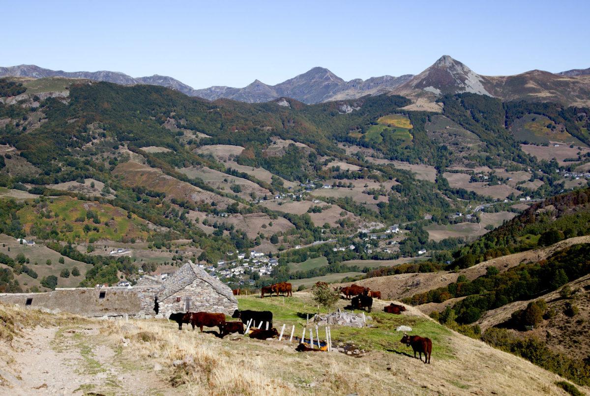 Vue sur le Puy Mary, Buron de la Fumade Vieille, Cantal, Auvergne.