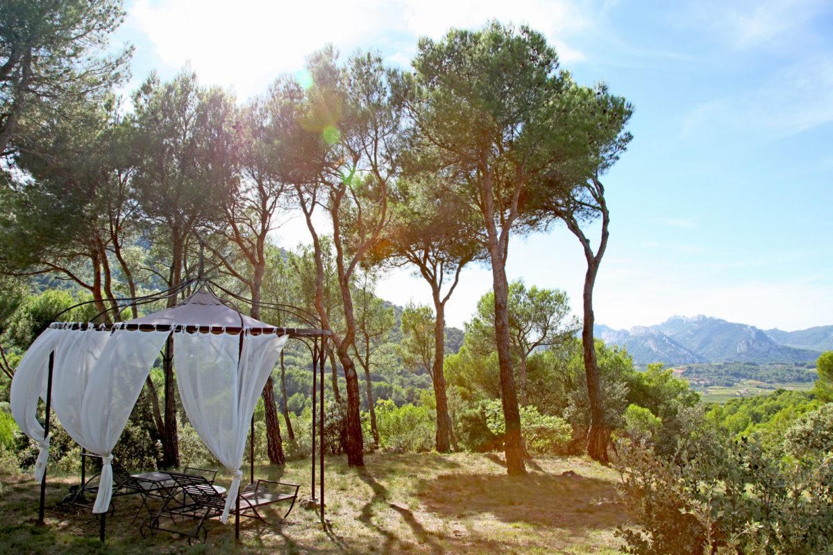 L'Aube Safran, maison d'hôtes dans le Vaucluse